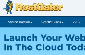 Famous Web Hosting in India