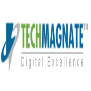 "<img src=""Techmagnate.jpg"" alt=""image of Techmagnate top seo company in india"">"