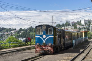 Darjeeling is famous for toy train and tea plantations.