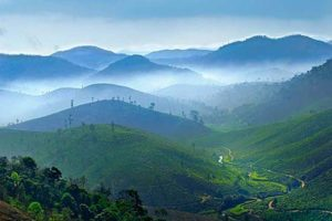 Blue Mountains of Nilgiris
