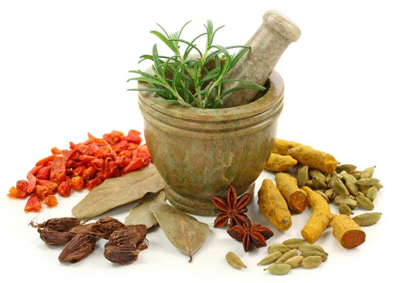 Indian herbs help to maintain a healthy lifestyle and boost your immunity.
